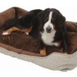犬をソファに乗らせない方法はあるのでしょうか?〜試行錯誤の対処法〜