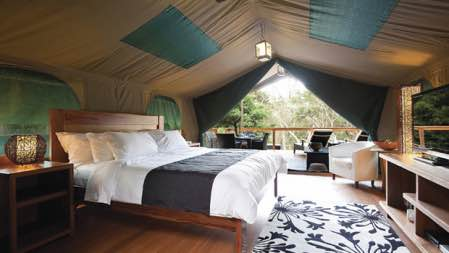 http://www.dailyaddict.com.au/articles/sydney/guide-to-sydneys-best-glamping-getaways/