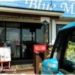 『三浦海岸アレーナ』とともに利用した三浦半島ドッグカフェ2つ