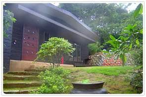リスの庭 四季の蔵