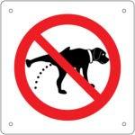 【トイレトレーニング成功まで】実際に行ったゴールデン・レトリーバー子犬のトイレトレーニングの方法