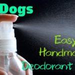犬の臭い・おしっこの臭いを消す【簡単】手作り消臭スプレー!