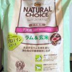 大型犬子犬のドッグフード選び。生後6ヶ月からニュートロのラム&玄米へ。