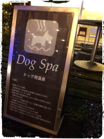 ホテル凛香 箱根強羅 ドッグスパ