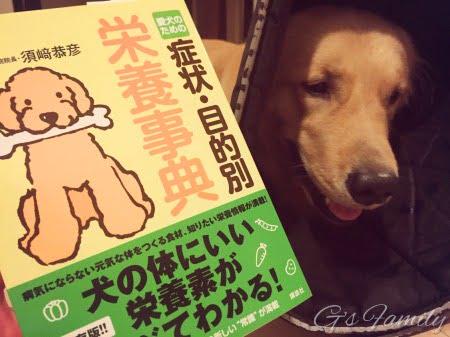 愛犬のための栄養時点