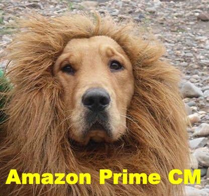 AmazonプライムCMゴールデンのライオンたてがみ