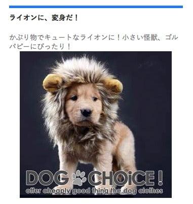 ライオンコスチューム犬