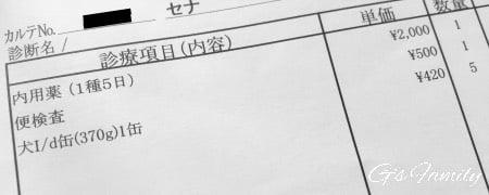 動物病院 診療明細2