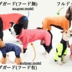 撥水?それとも防水?日本製アルファアイコンで犬のレインコートを選ぼう!【大型犬のレインコート】