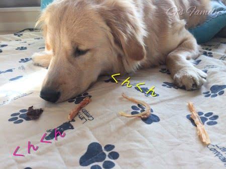犬の無添加おやつ国産オーシーファーム1