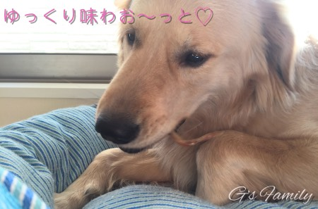 犬のおやつ・国産・無添加オーシーファーム豚耳
