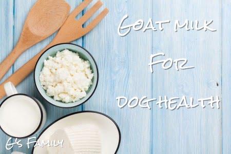 Goat milk For dog health G's Family