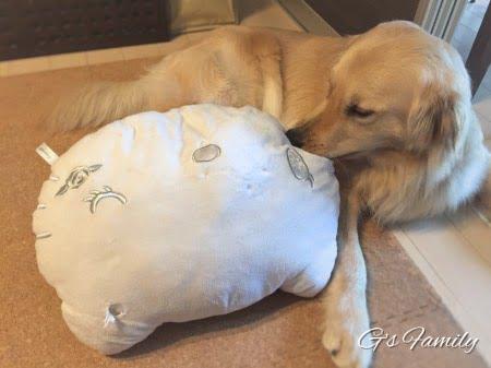 犬ぬいぐるみおもちゃの洗濯