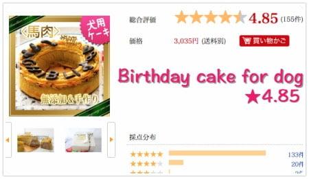 犬のお誕生日ケーキ馬肉