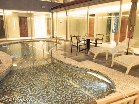 ホテル凛香富士山中湖ドッグプール
