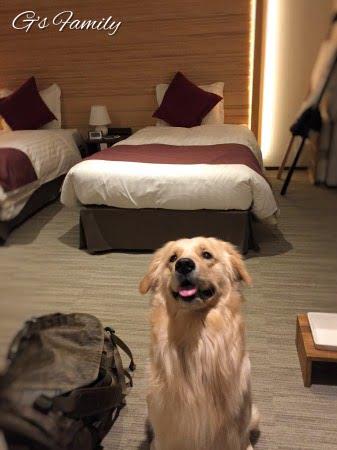 ホテル凛香富士山中湖犬連れ旅行