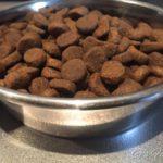 【大型犬のステンレス食器】子犬・成犬時使用の食器サイズ比較
