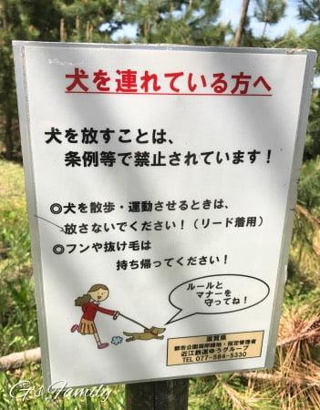 ホテルビワドッグでの琵琶湖遊び