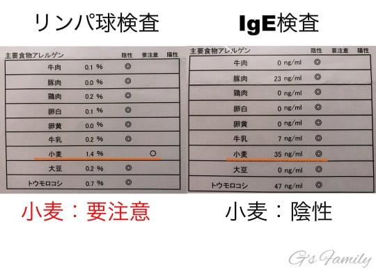 犬のアレルギー検査結果の比較Ige検査とリンパ球検査