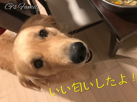 犬の手作り食セナごはん