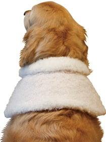 大型犬のクリスマスケープ