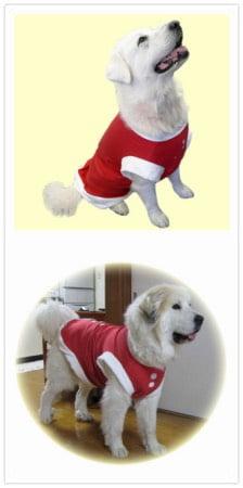 大型犬用クリスマス服