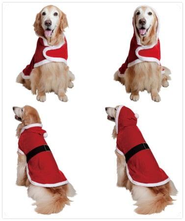 大型犬のクリスマスマント