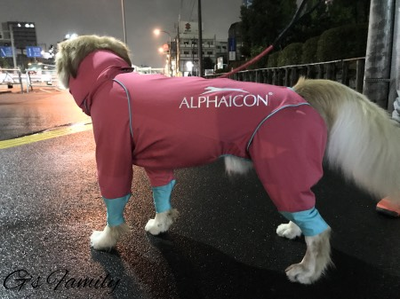 ニューレインドッグガード・アルファアイコン大型犬XLサイズ