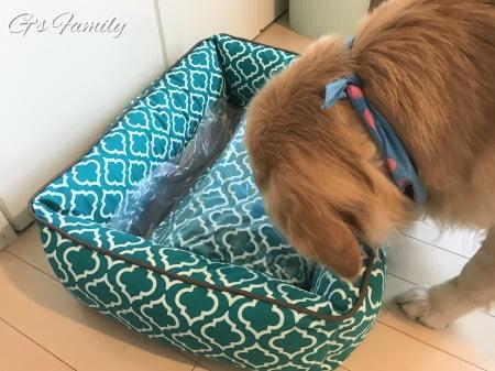 PLAYプレイのドッグベッド大型犬