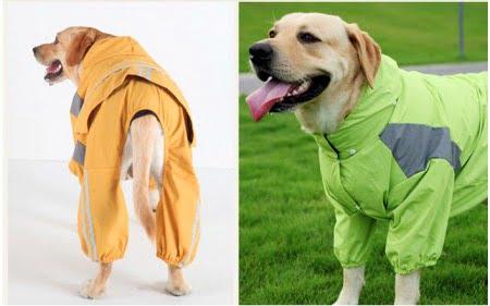 大型犬レインコート