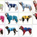 [大型犬用レインコート選び]汚れカバー率が高い人気ウェア5種