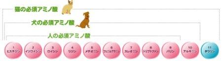 犬の必須アミノ酸