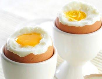 犬に卵をあげる