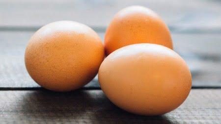 犬は卵が食べられるのか