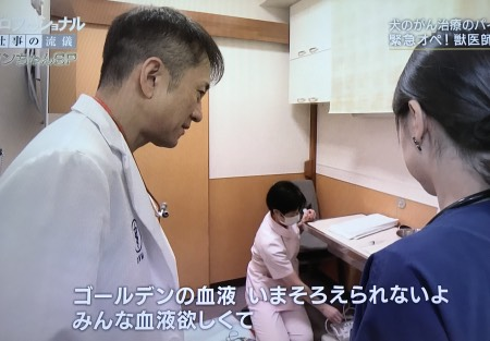NHKプロフェッショナル仕事の流儀・犬・小林哲也