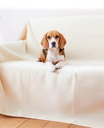 ぺピイ犬のためのマルチマット