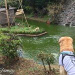 伊豆シャボテン動物公園に行ってきた!犬と入れる動物公園[犬連れ旅行]