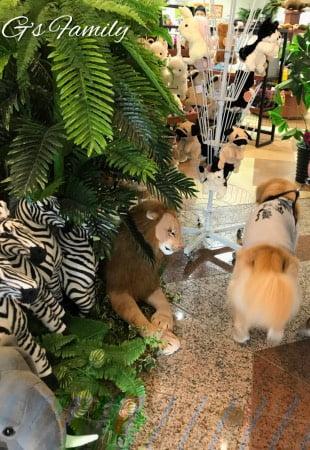犬連れ伊豆シャボテン動物公園お土産やさん