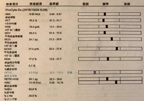 血液検査3歳10ヶ月(基本)