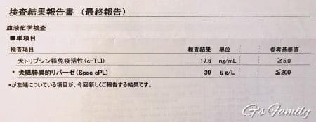 血液検査3歳10ヶ月