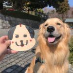 犬と一緒にお参りできる伊豆高原の「神祇大社」に行ってきました