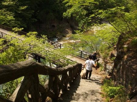 犬と鬼怒川(龍王峡)