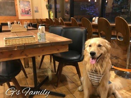 駒澤大学 ランニンングステーションカフェ(犬店内可)