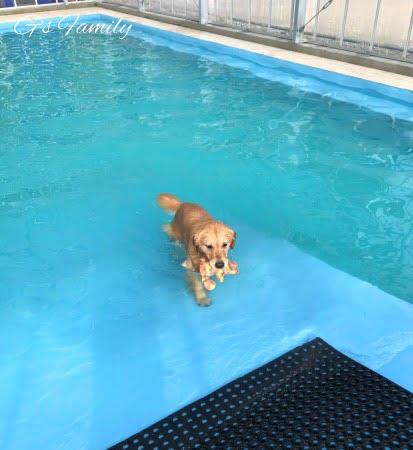 ゴールセナ5歳1ヶ月プールにて