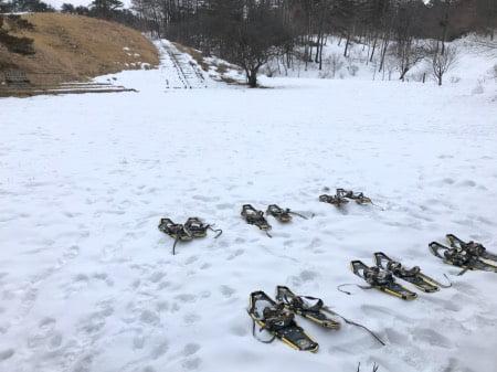 犬と軽井沢浅間牧場でスノーシュー