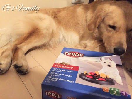 TRIXIE(トリクシー)犬の知育トイボードレベル2