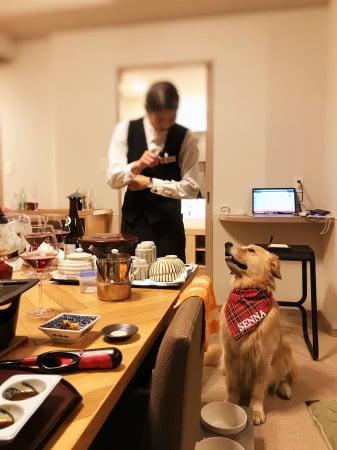レジーナ箱根仙石原の夕食タイムでご飯待ちをするゴールデン・レトリーバーセナ