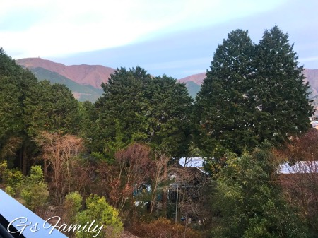 レジーナ箱根仙石原の部屋からの景色
