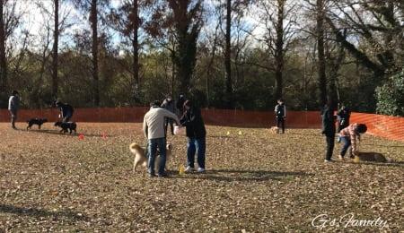 レトリバーデイ2021アンバサダーゲームの予行練習