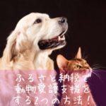 ふるさと納税で動物愛護支援をする方法